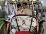 Аренда транспорта Для свадеб и торжеств, цена 2100 Грн., Фото