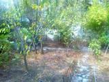 Дома, хозяйства АР Крым, цена 360000 Грн., Фото