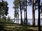 Земля и участки Харьковская область, цена 10 Грн., Фото