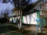 Дома, хозяйства Черкасская область, цена 25000 Грн., Фото