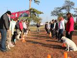 Собаки, щенки Занятия, тренировки, цена 35 Грн., Фото