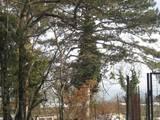 Земля и участки АР Крым, цена 1200000 Грн., Фото
