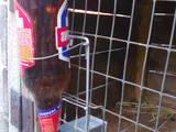 Гризуни Клітки та аксесуари, ціна 20 Грн., Фото