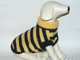 Собаки, щенки Аксессуары, цена 130 Грн., Фото