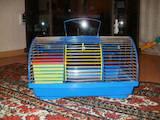 Грызуны Клетки  и аксессуары, цена 30 Грн., Фото