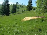 Земля і ділянки Івано-Франківська область, ціна 650 Грн., Фото