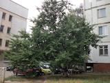 Квартиры Херсонская область, цена 228000 Грн., Фото