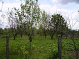 Земля і ділянки Черкаська область, ціна 40000 Грн., Фото