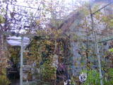 Дома, хозяйства Запорожская область, цена 122000 Грн., Фото