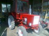 Трактори, ціна 42000 Грн., Фото