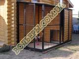 Собаки, щенята Аксесуари, ціна 10300 Грн., Фото