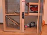 Грызуны Клетки  и аксессуары, цена 435 Грн., Фото