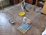 Собаки, щенки Аксессуары, цена 250 Грн., Фото
