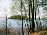 Земля и участки Другое, цена 1000000 Грн., Фото
