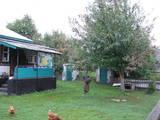 Дома, хозяйства Черниговская область, цена 130000 Грн., Фото