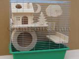 Грызуны Клетки  и аксессуары, цена 875 Грн., Фото
