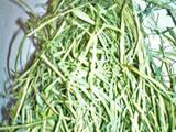 Грызуны Корм, цена 15 Грн., Фото