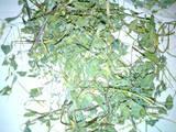 Грызуны Корм, цена 10 Грн., Фото