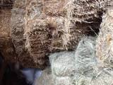 Будматеріали Газобетон, керамзит, ціна 20 Грн., Фото