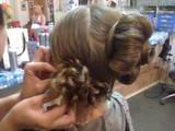 Курсы, образование Курсы парикмахеров, цена 500 Грн., Фото
