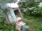 Дома, хозяйства Черниговская область, цена 120000 Грн., Фото