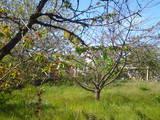 Дачі та городи АР Крим, ціна 150000 Грн., Фото