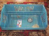Грызуны Клетки  и аксессуары, цена 450 Грн., Фото