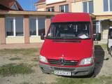 Автобуси, ціна 240000 Грн., Фото
