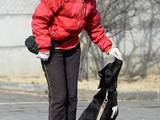 Собаки, щенята Заняття, тренування, ціна 100 Грн., Фото