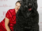 Собаки, щенки Черный терьер, цена 8000 Грн., Фото
