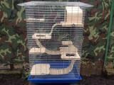 Животные Разное, цена 700 Грн., Фото