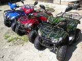 Квадроциклы ATV, цена 17420 Грн., Фото