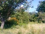 Дачі та городи Волинська область, ціна 240000 Грн., Фото