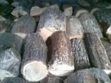 Стройматериалы,  Материалы из дерева Брёвна, цена 400 Грн., Фото