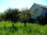 Дома, хозяйства Черкасская область, цена 600000 Грн., Фото