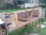 Гризуни Клітки та аксесуари, ціна 400 Грн., Фото