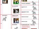 Собаки, щенята Жорсткошерстий фокстер'єр, ціна 15000 Грн., Фото