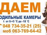 Помещения,  Склады и хранилища Одесская область, цена 101 Грн./мес., Фото