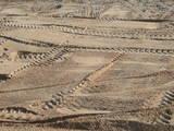 Стройматериалы Песок, гранит, щебень, цена 1000 Грн., Фото