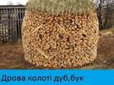 Дрова, брикети, гранули Дрова колоті, ціна 10 Грн., Фото