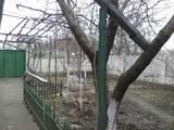 Будинки, господарства Миколаївська область, ціна 875000 Грн., Фото
