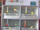 Попугаи и птицы Клетки  и аксессуары, Фото
