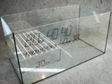 Рибки, акваріуми Акваріуми і устаткування, ціна 390 Грн., Фото
