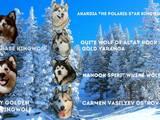 Собаки, щенята Аляска маламут, ціна 8000 Грн., Фото