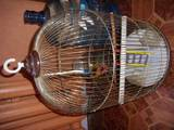 Папуги й птахи Клітки та аксесуари, ціна 450 Грн., Фото