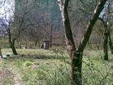 Земля і ділянки Львівська область, ціна 10000 Грн., Фото