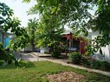 Будинки, господарства Чернівецька область, ціна 420000 Грн., Фото