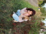 Собаки, щенята Йоркширський тер'єр, ціна 500 Грн., Фото