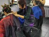 Курси, освіта Курси перукарів, ціна 1100 Грн./мес., Фото