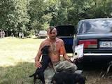 Собаки, щенята Спаровування, ціна 50 Грн., Фото